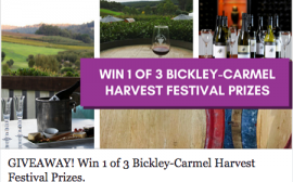 The 2017 Bickley Carmel Competition
