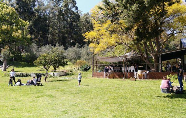 Lawnbrook Estate & The Packing Shed@Lawnbrook
