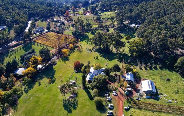 Lawnbrook Estate & The Packing Shed@Lawnbrook